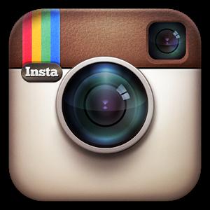 boton instagram